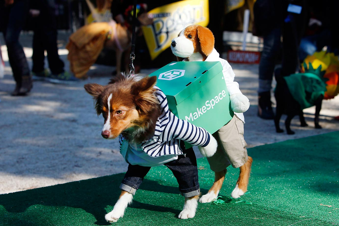 Dogs in Costume & Hot Clicks: Dogs in Halloween Costumes | SI.com