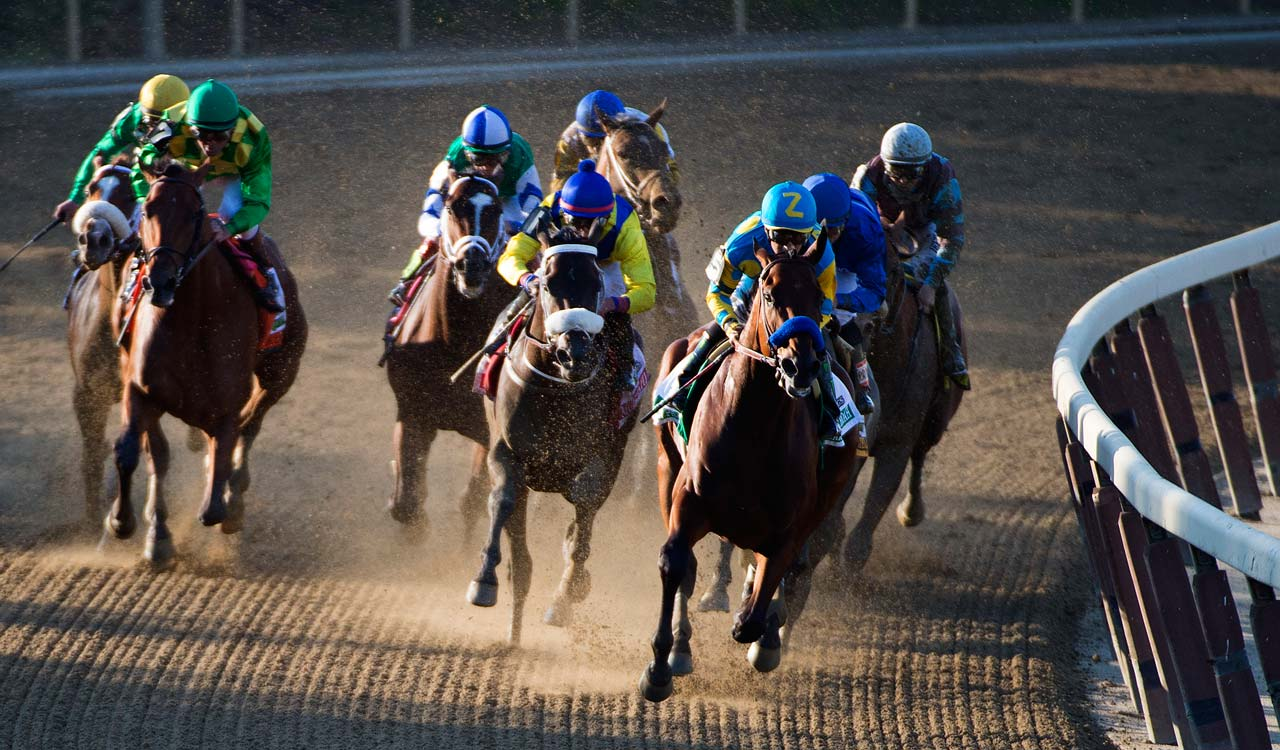American Pharoah covered the distance in 2:26.65 -- the sixth-fastest in Belmont history. (Text credit: AP)