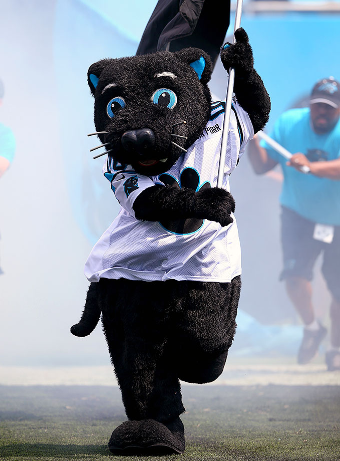 "It's time to officially challenge Sir Purr's page on the Panthers' website, where he shares his favorite snacks as ""birds, like falcons and eagles and seahawks."" There's no way this charred pink panther is a carnivore. The site also says he ""averages more than seven million smiles annually,"" which has to include the birds he has previously talked crap about."