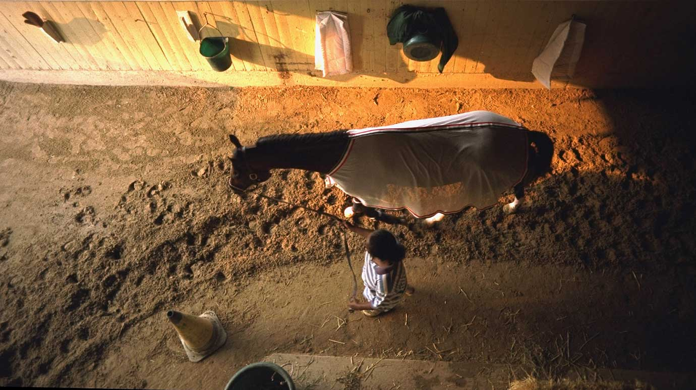 The view of Cigar in the stall with his handler in 1995.