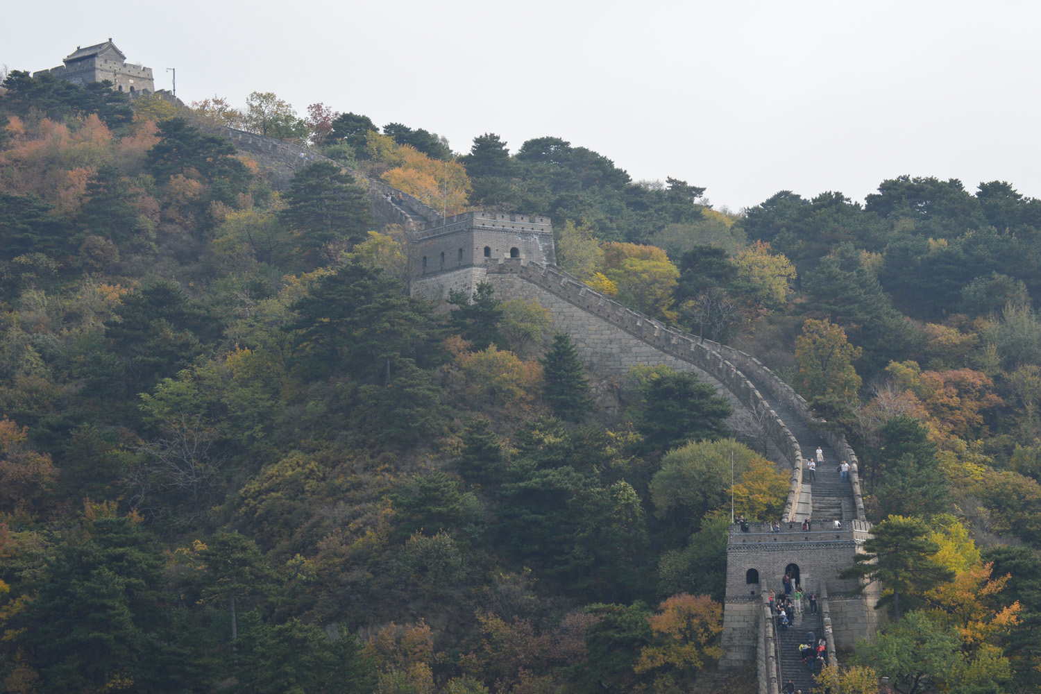 Climbing the Great Wall of China