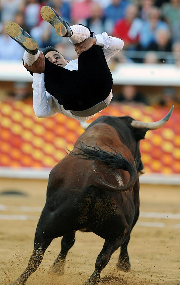 Spanish recortador Pakito Murillo jumps over a Banuelos bull during the festival of Bayonne in southwestern France.