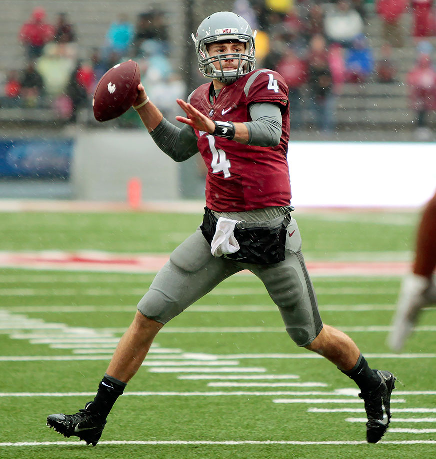 While Cal's Jared Goff dominated the headlines, Falk quietly had one of the best statistical seasons in the Pac-12. In his sophomore year, he threw for 4,561 yards with 38 touchdowns and just eight interceptions. Falk led the Cougars to a 9–4 record, including a win over Miami in the Sun Bowl.