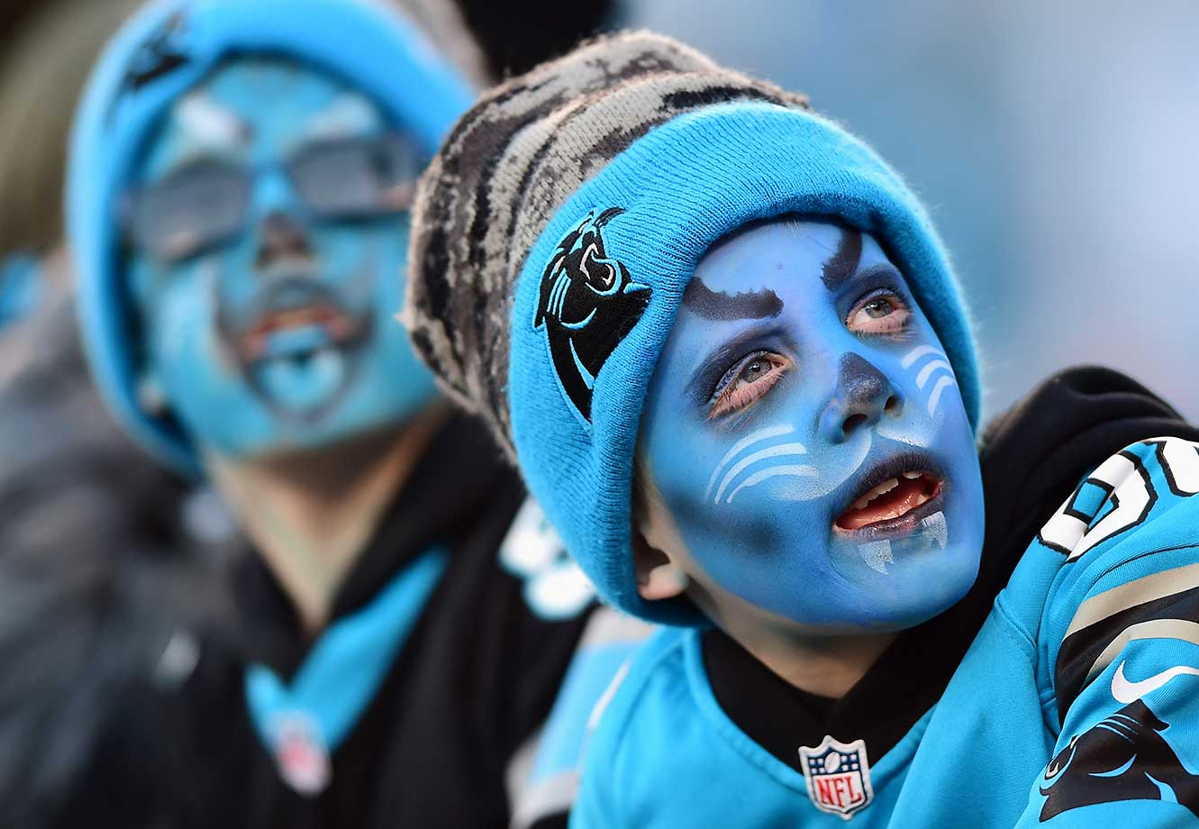 Carolina Panthers fans look on prior to the NFC Championship Game.