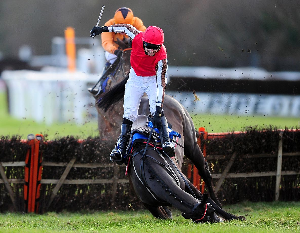 Paddy Brennan and Pitter Patter fall while leading at the last in The Super Sunday 8th February Mares' Handicap Hurdle Race at Exeter Racecourse in Exeter, England.