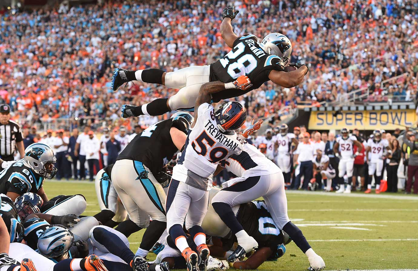 Jonathan Stewart carried the ball 12 times for 29 yards.