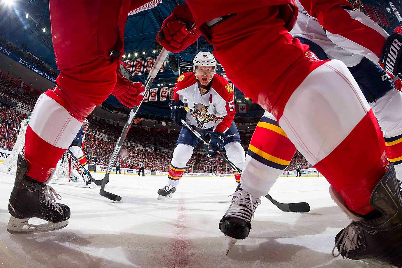 Brian Campbell of the Florida Panthers follows the play against the Detroit Red Wings.