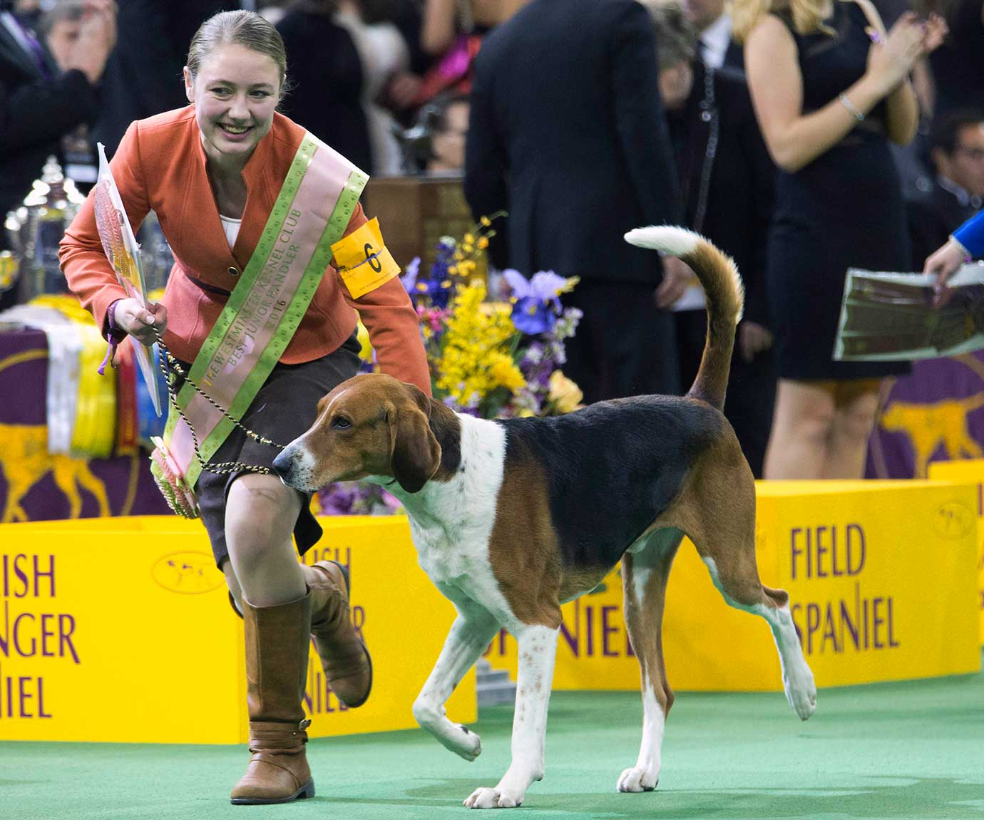 Sophia Rogers, of Bordentown N.J., leaves with her American fox hound after winning the Junior Showmanship at the Westminster Kennel Club dog show.