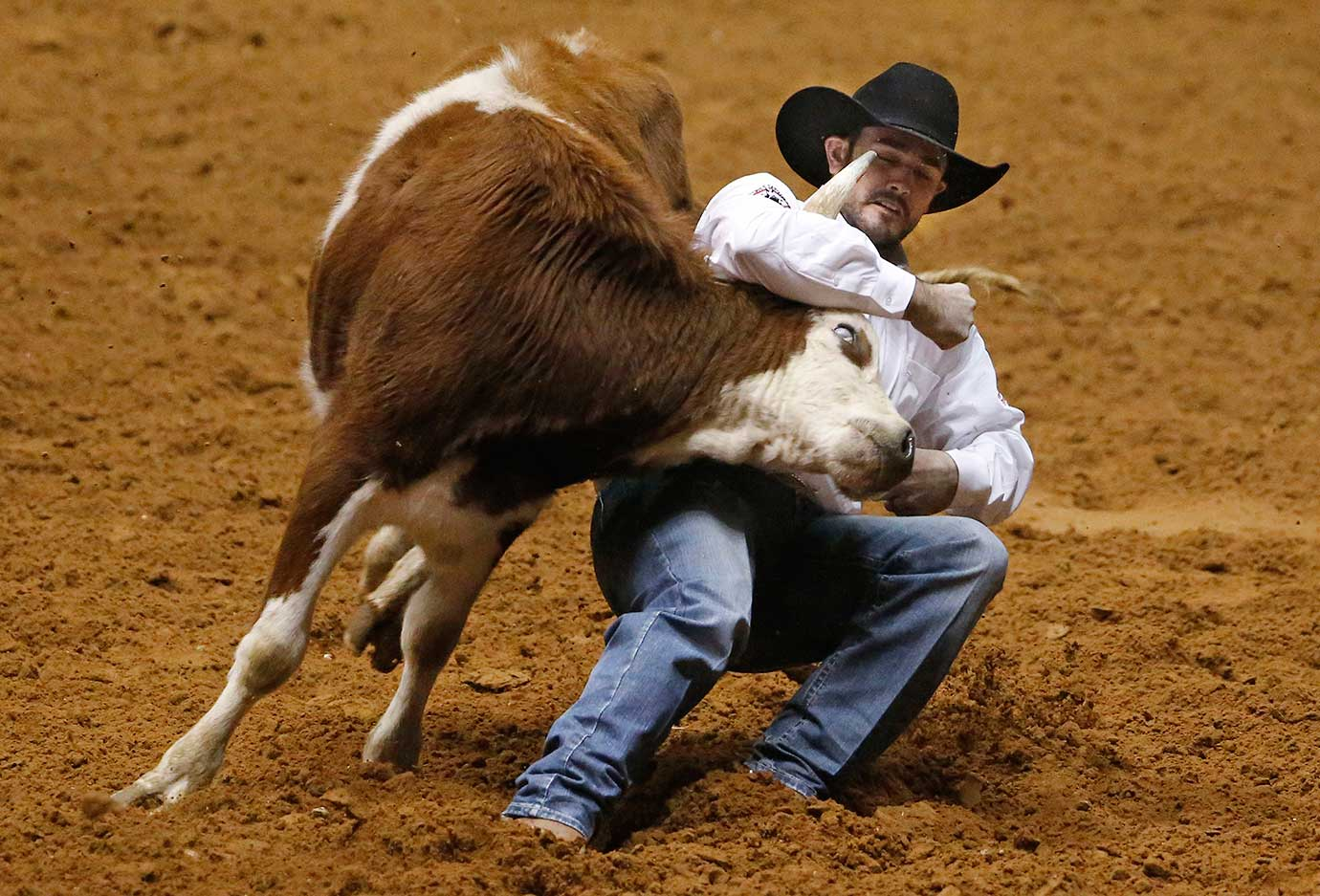 Baylor Roche scores a 4.60 seconds in steer wrestling during the Super Shootout at the Fort Worth Stock Show Rodeo in Texas.