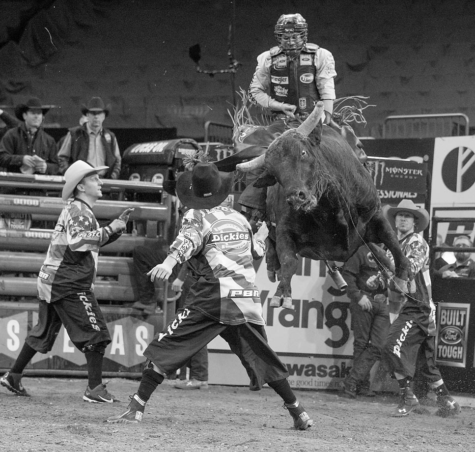 Photographer Fred R. Conrad saddled up to go behind the scenes to capture these arresting images of the 2015 Professional Bull Riders Monster Energy Buck off at Madison Square Garden. The World's top 35 bull riders were in NYC for the event.