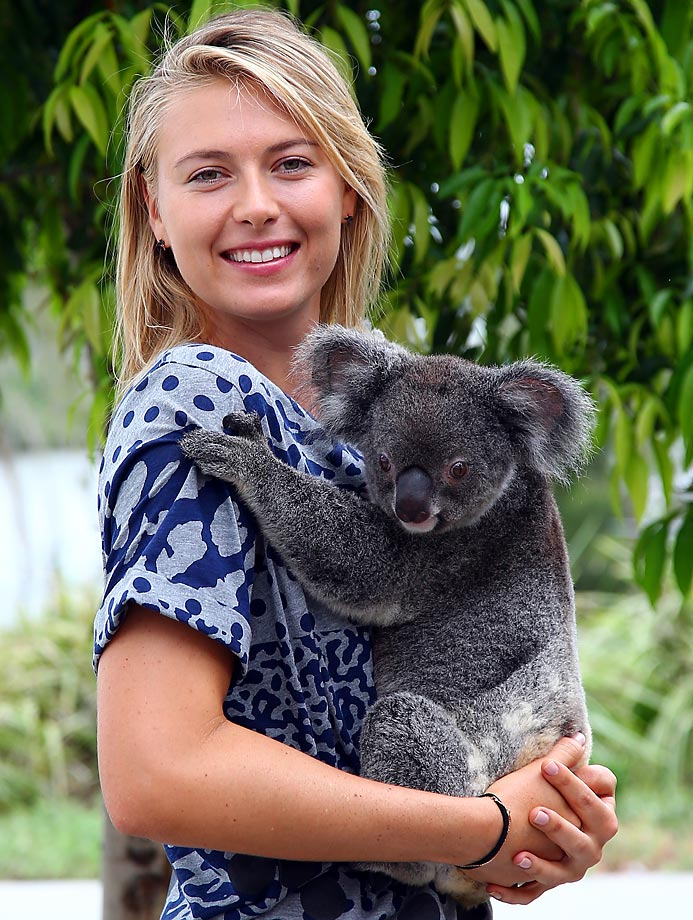Maria Sharapova gets up close with Sinnamon, a koala from Lone Pine Koala Sanctuary in Brisbane, Australia, on Jan. 7, 2015.
