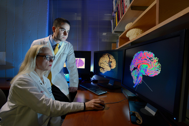 Dr. Rebecca Folkerth and Dr. Brian Edlow conducts brain concussion research at the Martinos Center for Biomedical Imaging.