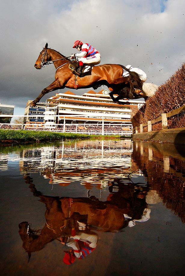 Reflections at the Betfred Mandarin Handicap Steeple Chase at Newbury racecourse.