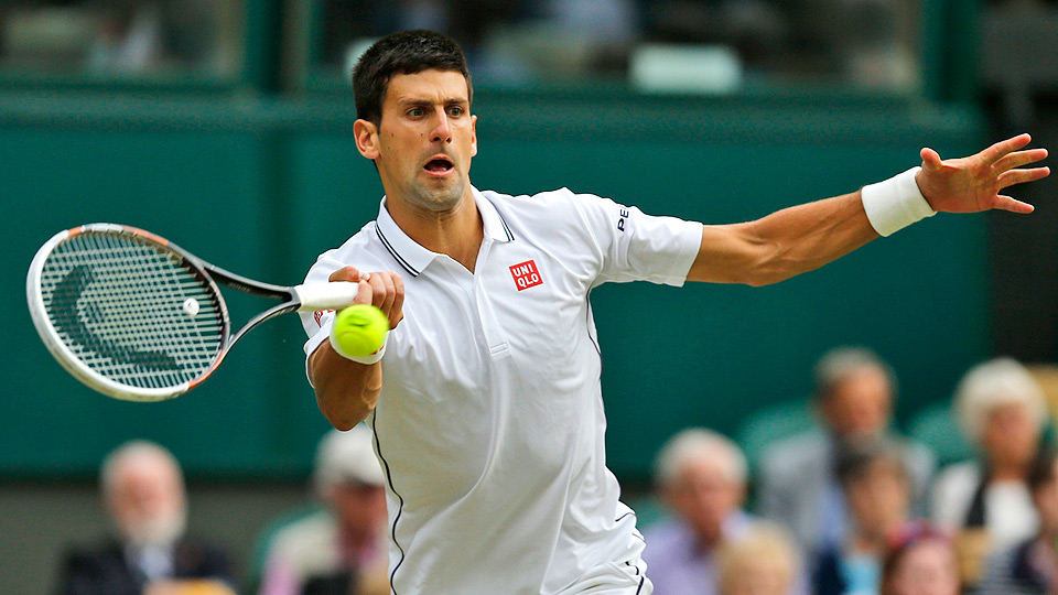 Novak Djokovic gave a close call to Radek Stepanek, but on the final point of the match, a close call went Djokovic's way.