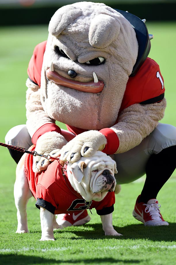 Georgia Bulldogs mascots during game last week's game against Vanderbilt.