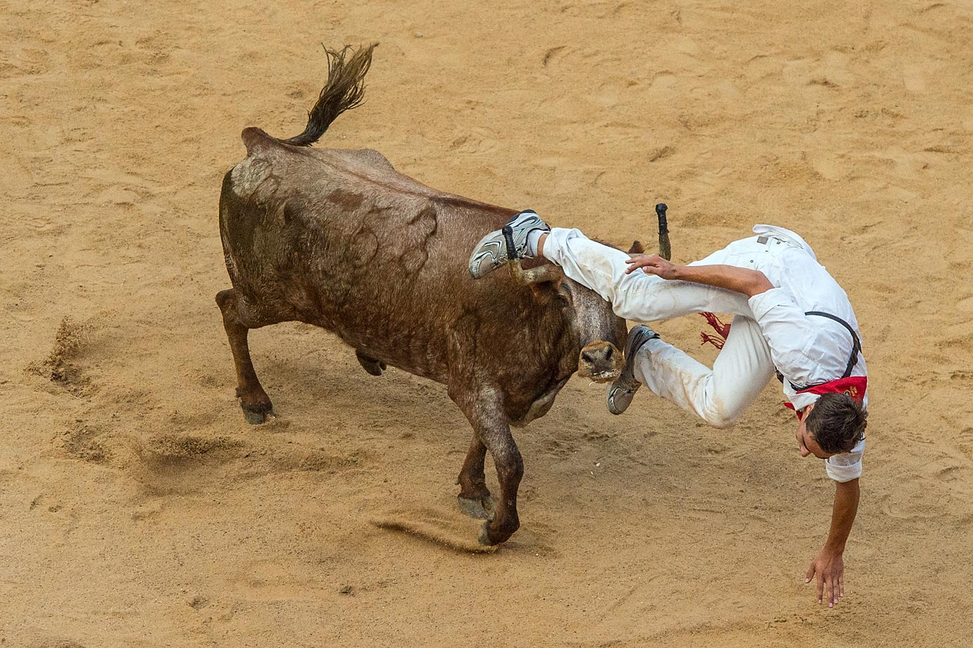 Inside the Pamplona bullring during the second day of the San Fermin Running of the Bulls festival in Spain.