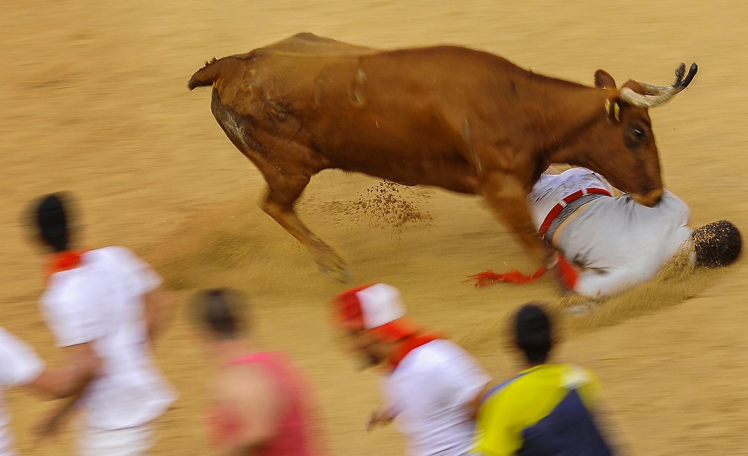 Revelers from around the world arrive in Pamplona every year to take part in some of the eight days of the running of the bulls.