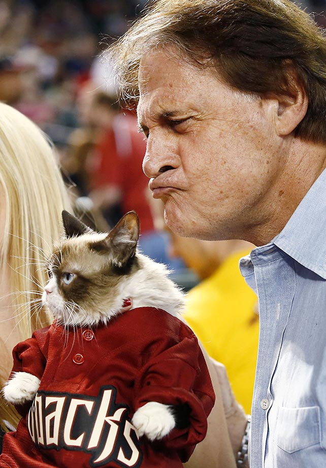 Tony La Russa, Arizona Diamondback's Chief Baseball Officer, goofs around for a photo with Grumpy Cat, an Internet celebrity cat whose real name is Tardar Sauce.