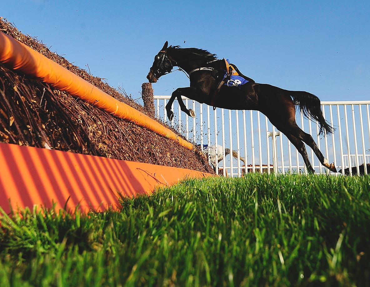 A loose horse clears the final fence in the Totetrifecta Pick the 1,2,3 Best Mate Handicap Steeple Chase.