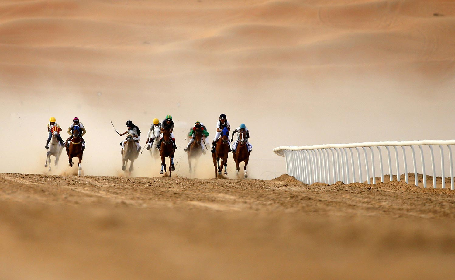 Jockeys compete in a race for purebred Arab horses during the Liwa 2016 Moreeb Dune Festival in the Liwa desert.