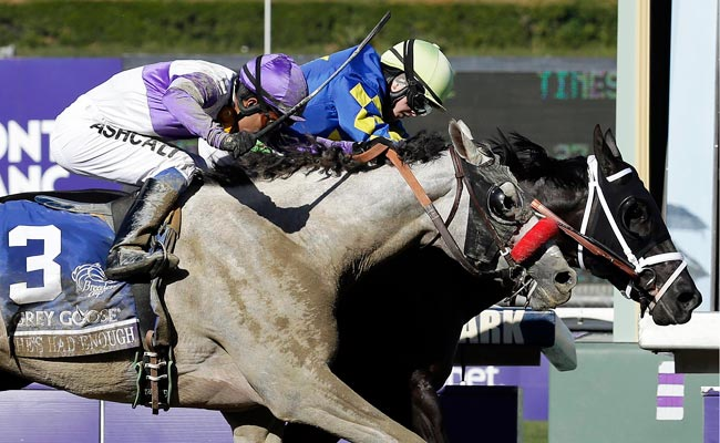 Shanghai Bobby won the Breeders' Cup Juvenile horse race in Nov. 2012.