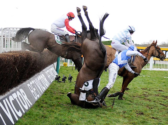 Bold Sir Brian demonstrates the equine version of a face-plant at England's Cheltenham Race Course. And so this week's edition comes to a clumsy conclusion.
