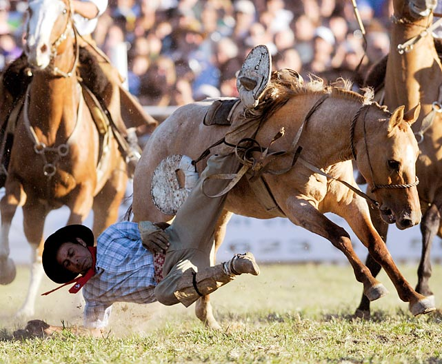 A cowboy falls from his horse in Montevideo, Uruguay during the city's annual Holy Week rodeo.