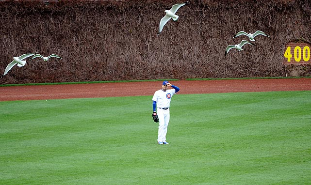 David DeJesus enjoys the view at Wrigley Field during a game against the Cincinnati Reds.