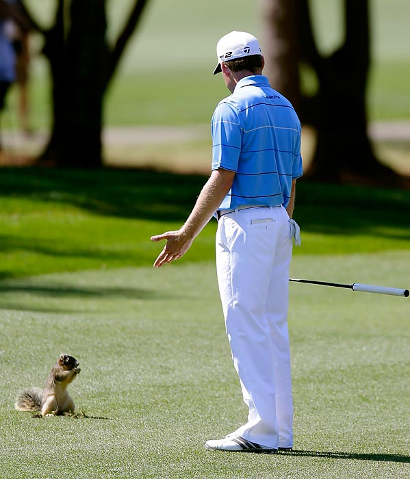 Justin Leonard wonders what a squirrel is doing on the 10th fairway during the Tampa Bay Championship in Palm Harbor, Fla.