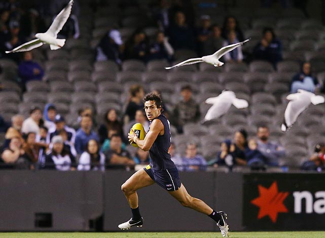 Kane Lucas of the Carlton Blues runs with the ball with seagulls in Melbourne, Australia.