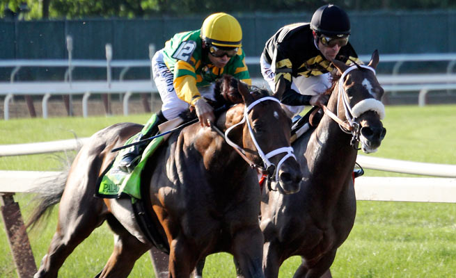 Palace Malice edged out Oxbow (far right) for first in the 145th running of the Belmont Stakes.