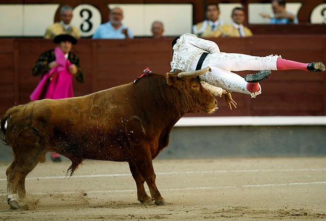 Spanish bullfighter Rafael Cerro is tossed by a bull during a bullfight in Madrid on June 23.
