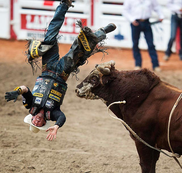 Kody Lostroh has a beef with Shark Baitin during the finals of the 101st edition of the famed rodeo in Calgary.