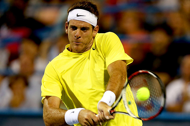 Juan Martin del Potro has 10 hardcourt tournament titles, including a win at the 2009 U.S. Open.