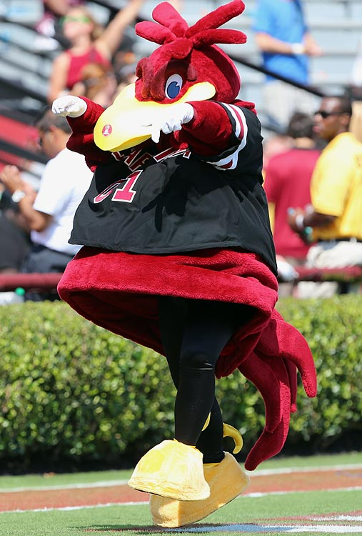 #23: South Carolina's Cocky — A mascot named Cocky that does photo shoots and generally horses around. *Swoon.*