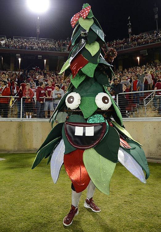 #11: Stanford's The Tree — Scary, weird and distinctly Palo Alto.