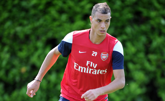 Marouane Chamakh joined Arsenal from Bordeaux in 2010.