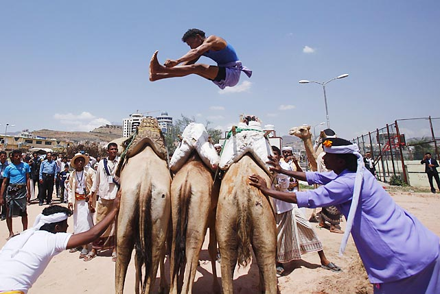 To help Yemen's beleaguered tourism biz get over the hump, the country is trying to reassure visitors about its stability by staging a two-week festival that includes such reassuring spectacles as camel jumping.