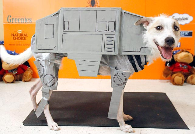 "A pooch at PetSmart's Halloween shindig in Dallas made like Preston, the sheep-rustling canine robot (""He was made for good but now he's evil!!"") from the Wallace & Gromit classic <italics>A Close Shave</italics>."