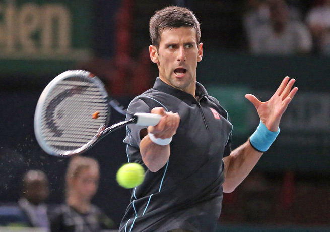 Novak Djokovic rallied in both sets to defeat defending champion David Ferrer in Paris.