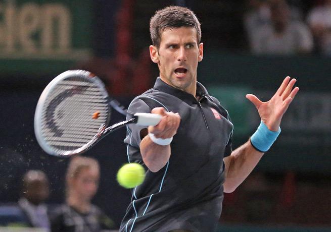 Novak Djokovic rallied in both sets to defeat defending champion David Ferrer in Paris.