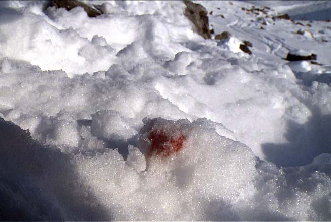 A video screen grab supposedly shows Michael Schumacher's blood on the snow after his accident.