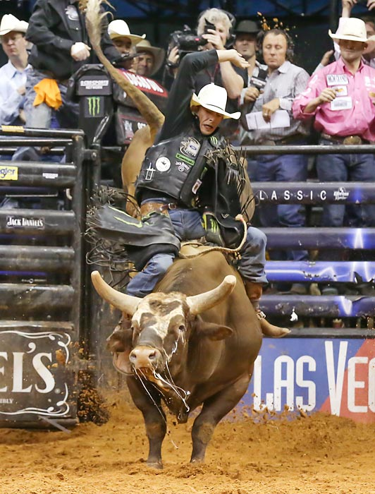 No bull: The legendary Bushwacker is heading for retirement. Regarded as the greatest bucking hunk of beef in rodeo history, he put together a hellacious streak of 42 consecutive ejections in 2013 before current World Champ J.B. Mauney hung on for dear life en route to his world title. Bushwacker's Farewell Tour began in Oklahoma City on Jan. 25.
