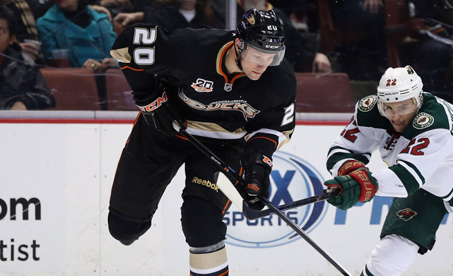 In 25 games with the Ducks, David Steckel has recorded one goal and added five assists.