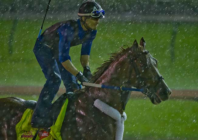 Tapiture worked out in the rain on Monday morning in preparation for Saturday's Kentucky Derby