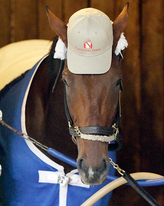 As far as the fourth-place finisher is concerned, the Kentucky Derby is nuthin' but a hat.