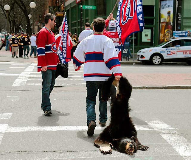 Living dangerously: A supporter of Les Habitants took his life in his hands by dragging a bruin carcass across Causeway Street in front of Boston's TD Garden. So much for cheeky displays. The hometown Bruins sank their teeth into the visitors, sending them to a 5-3 defeat in Game 2 of their second round playoff series.