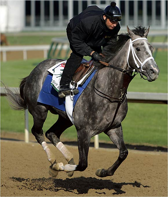 What does Flashy Bull have in common with 2005 winner Giacomo? A lot: Son of 1994 Horse of the Year Holy Bull. Ridden by Mike Smith. Odds of 50-1 (Flashy Bull in the morning line, Giacomo at post time, but still...).  Gray in color. One lifetime victory. Does lightning strike twice? Flashy Bull hasn't won a race since breaking his maiden in October and finished a soundly beaten seventh in the Florida Derby. Think very carefully before reaching for your wallet.
