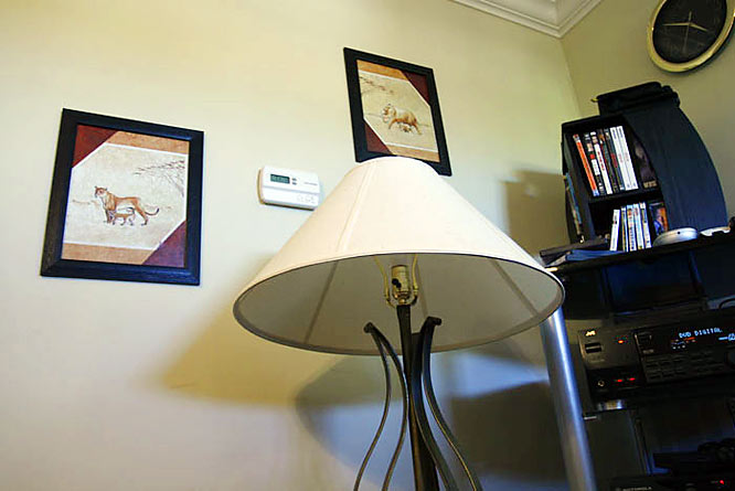 """While these pictures may seem out of place in the living room, they actually match the pillows on the sofa and the similarly colored flowered centerpiece on their dining room table.  """"We like to keep everything nice around here."""""""