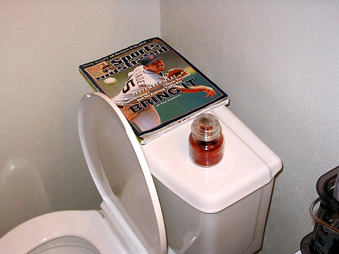 An excellent choice of bathroom reading material, if we must say. And even some decorative scented candles to boot!